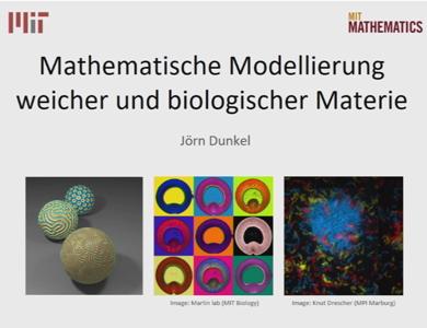 Mathematische Modellierung weicher und biologischer Materie. Von 'smarten' Golfbällen zur embryonalen Strukturbildung