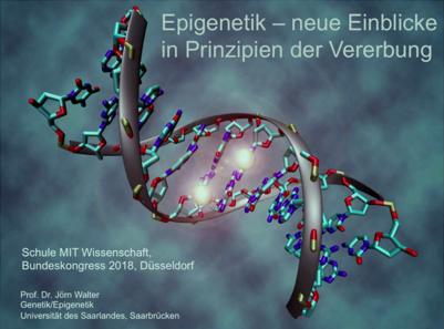 Epigenetik – neue Einblicke in Prinzipien der Vererbung